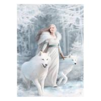 Canvas Winter Guardian Anne Stokes