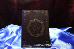 Diario Wicca Ivy