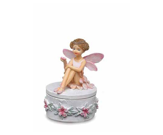 Dream Fairy cofanetto
